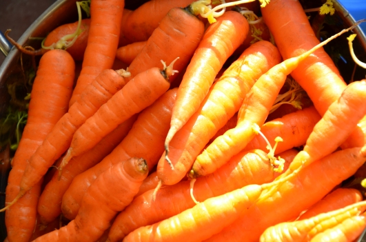 Sweet fall carrots